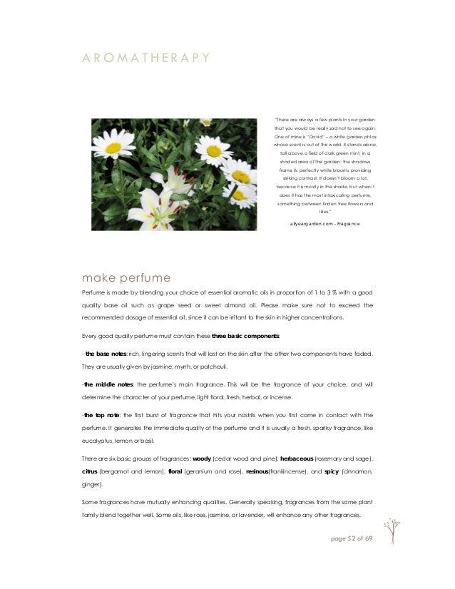 All Year Garden - the ebook