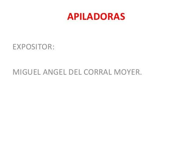 APILADORAS EXPOSITOR: MIGUEL ANGEL DEL CORRAL MOYER.