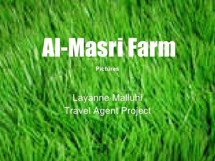 Al-Masri Farm Layanne Malluhi Travel Agent Project Pictures