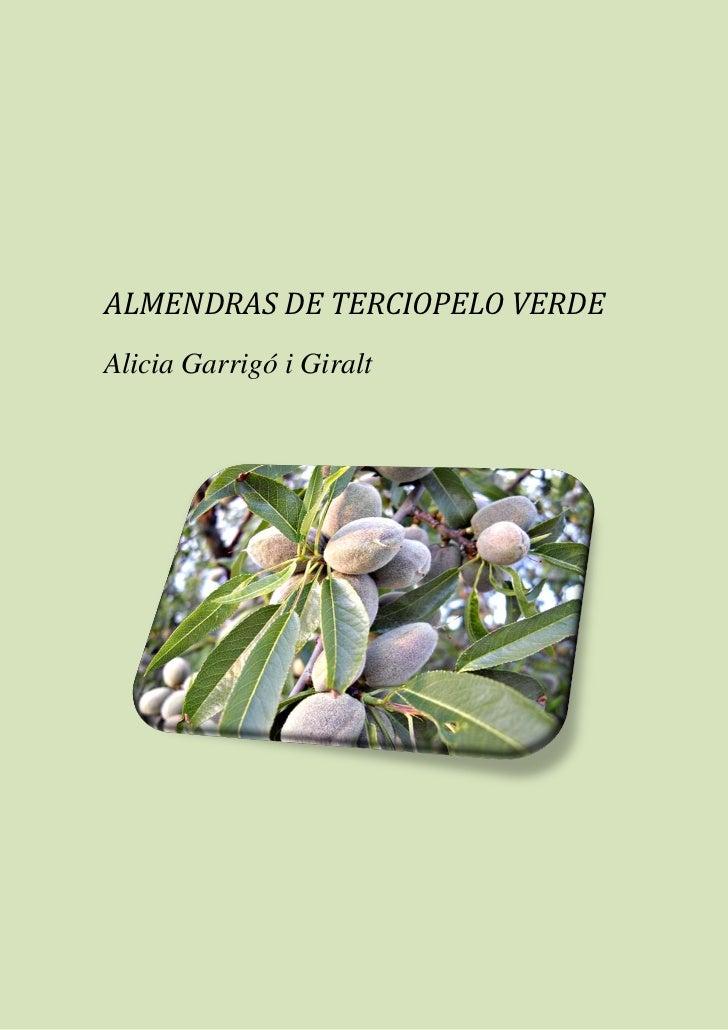 ALMENDRAS DE TERCIOPELO VERDEAlicia Garrigó i Giralt