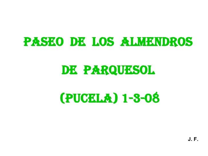 PASEO  DE  LOS  ALMENDROS  DE  PARQUESOL  (PUCELA) 1-3-08 J. F.