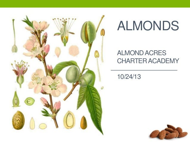 Almond Presentation.pptx Almond Acres Charter