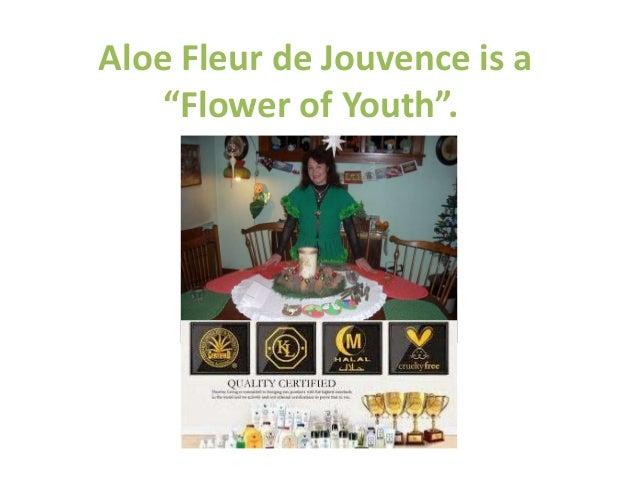 """Aloe Fleur de Jouvence is a  """"Flower of Youth""""."""