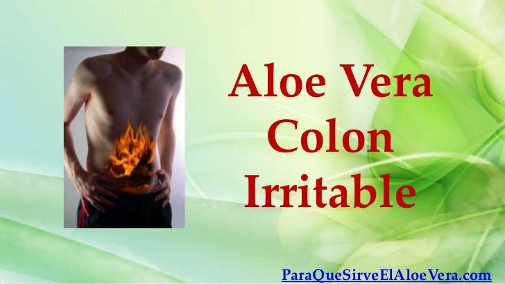 Aloe vera colon irritable - Cuidados del aloe vera ...
