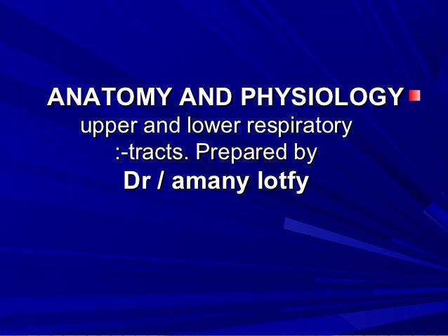 ANATOMY AND PHYSIOLOGY upper and lower respiratory    :-tracts. Prepared by     Dr / amany lotfy