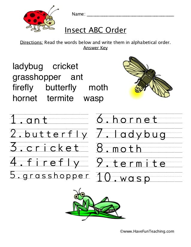 Alphabetical order-worksheet-insects