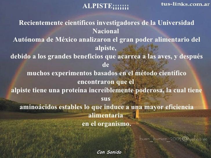 ALPISTE¡¡¡¡¡¡¡  Recientemente científicos investigadores de la Universidad Nacional  Autónoma de México analizaron el gran...
