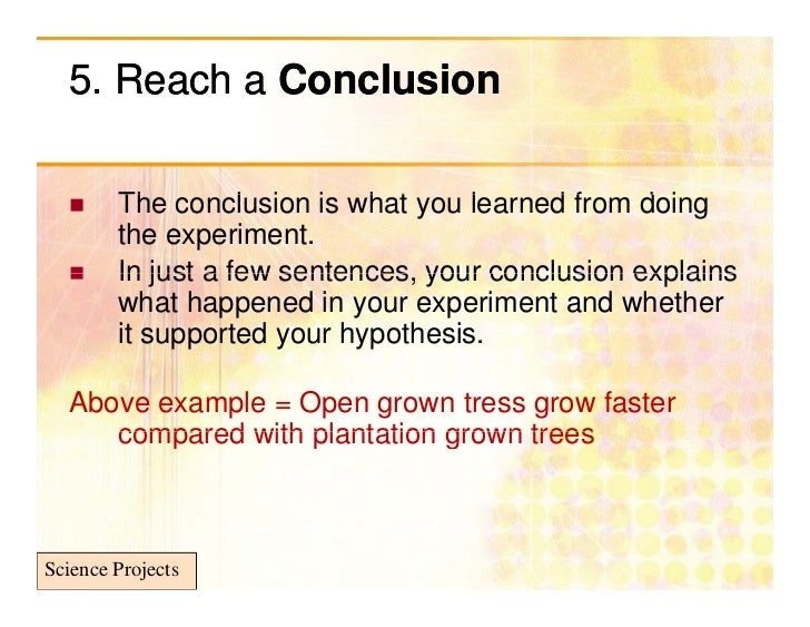 science experiment conclusion example