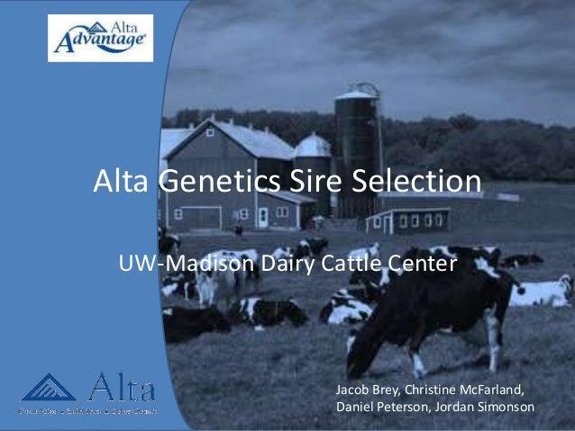 Alta Genetics Sire SelectionUW-Madison Dairy Cattle CenterJacob Brey, Christine McFarland,Daniel Peterson, Jordan Simonson
