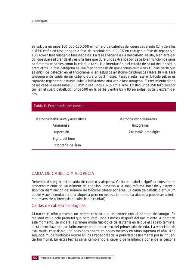 Lujo La Anatomía Y La Fisiología Del Cabello Elaboración - Imágenes ...