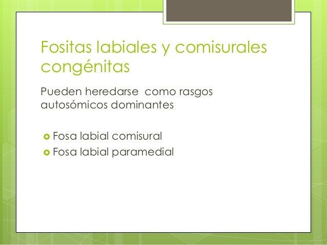 Fositas labiales y comisurales congénitas Pueden heredarse como rasgos autosómicos dominantes  Fosa labial comisural  Fo...