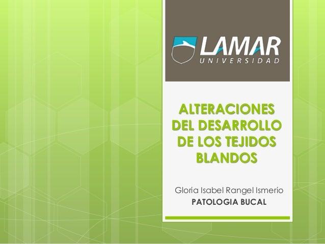 ALTERACIONES DEL DESARROLLO DE LOS TEJIDOS BLANDOS Gloria Isabel Rangel Ismerio PATOLOGIA BUCAL