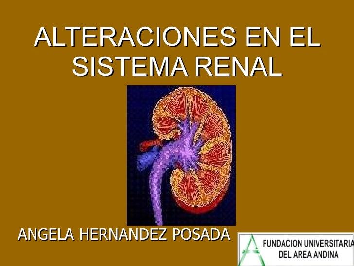 ALTERACIONES EN EL SISTEMA RENAL ANGELA HERNANDEZ POSADA