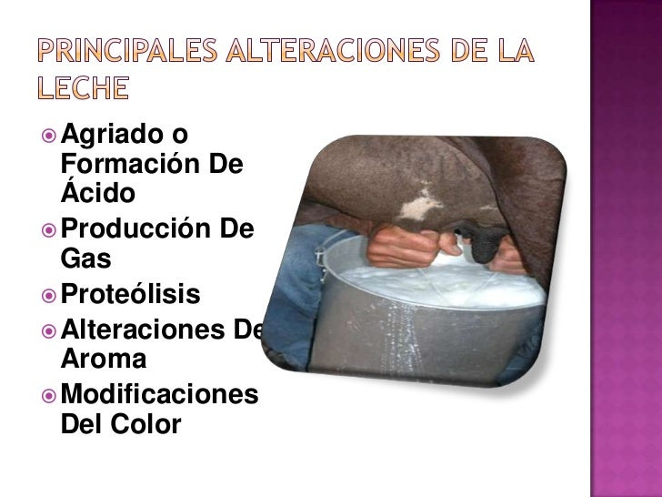 Alteraciones microbiológicas de la leche Slide 3