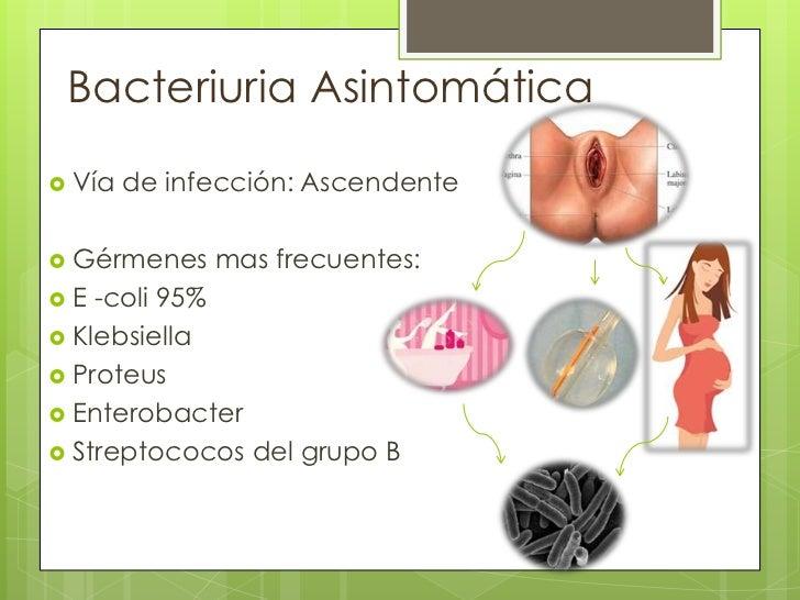 Alteraciones renales y urinarias en el embarazo infección