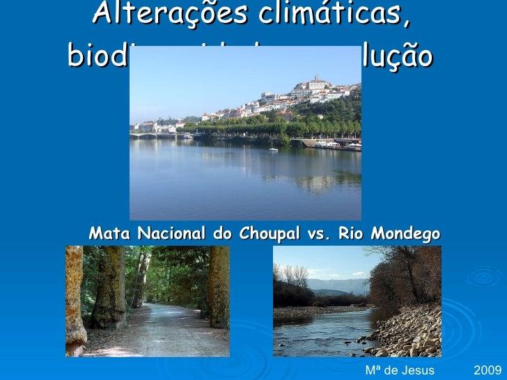 Alterações climáticas, biodiversidade e evolução Mata Nacional do Choupal vs. Rio Mondego Mª de Jesus  2009