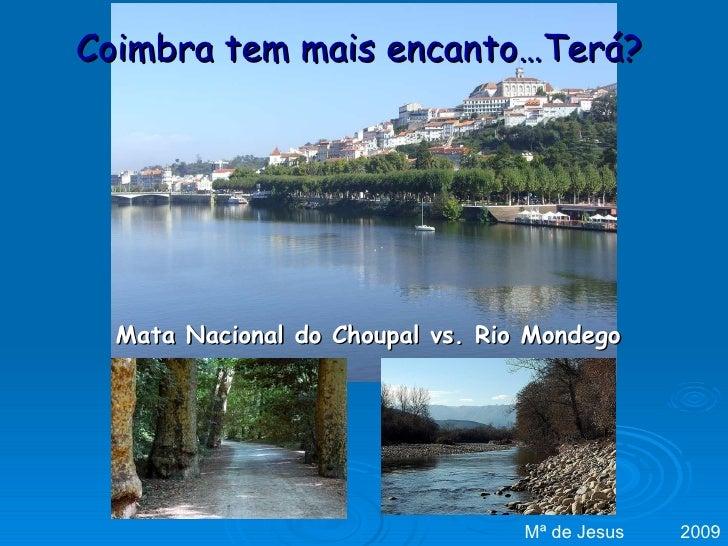 Coimbra tem mais encanto…Terá? Mata Nacional do Choupal vs. Rio Mondego Mª de Jesus  2009