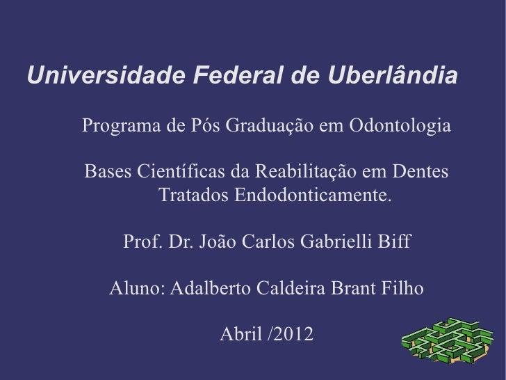 Universidade Federal de Uberlândia    Programa de Pós Graduação em Odontologia    Bases Científicas da Reabilitação em Den...