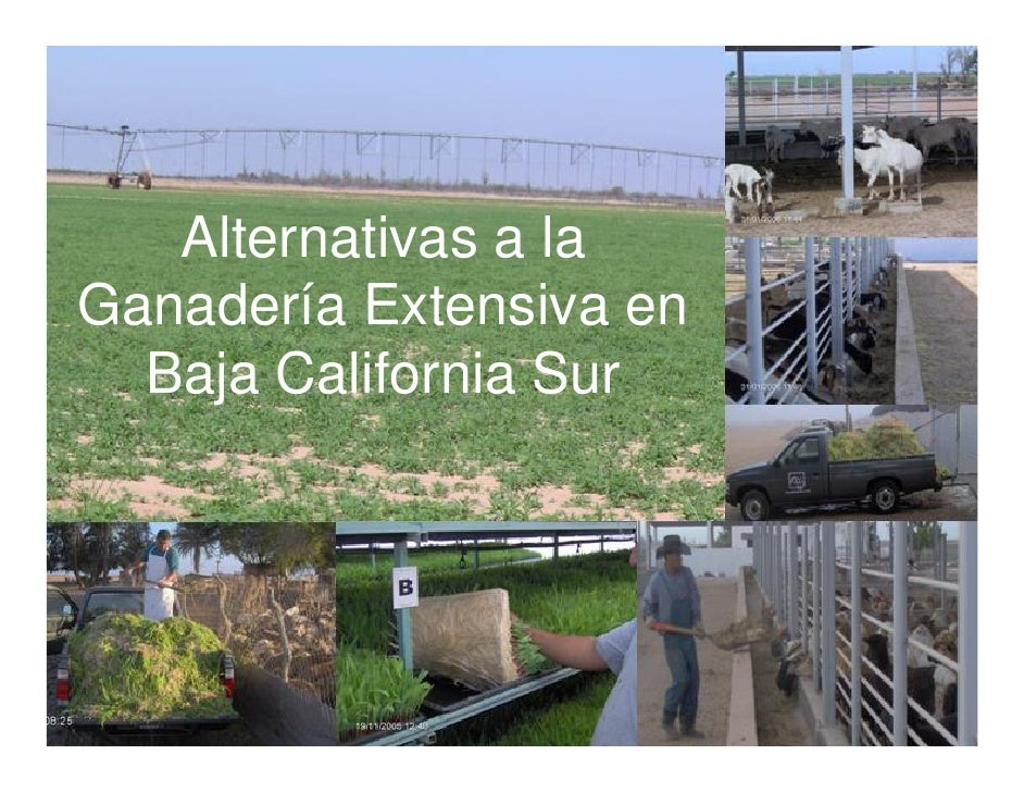 Alternativas a la Ganadería Extensiva en   Baja California Sur