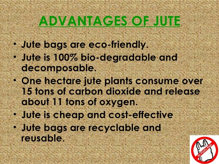disadvantages of using plastic bag What are the advantages and disadvantages of manufacturing of plastic the disadvantages of plastic use how anyone can justify the use of plastic bags.