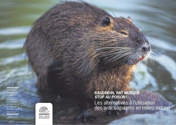 France NatureEnvironnementRéseau Nature                      RAGONDIN, RAT MUSQUÉ8 rue Adèle Riton                      ST...