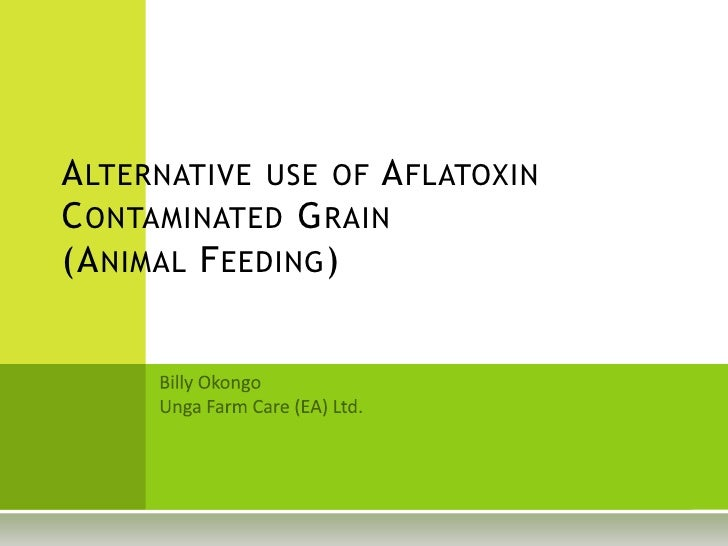 Alternative use of Aflatoxin Contaminated Grain	(Animal Feeding)<br />Billy Okongo<br />Unga Farm Care (EA) Ltd.<br />
