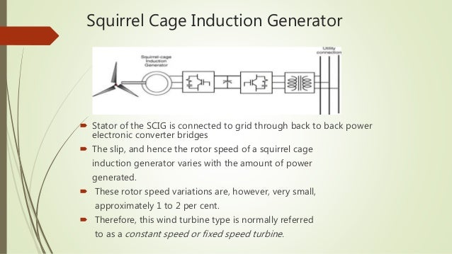 fixed speed squirrel cage induction generator