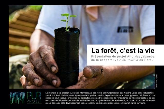 La forêt; c'est la vie