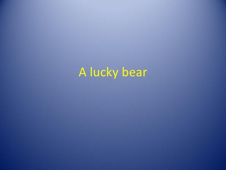 A lucky bear