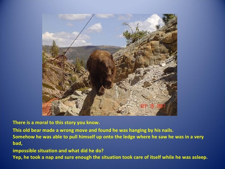 <ul><li>There is a moral to this story you know. </li></ul><ul><li>This old bear made a wrong move and found he was hang...