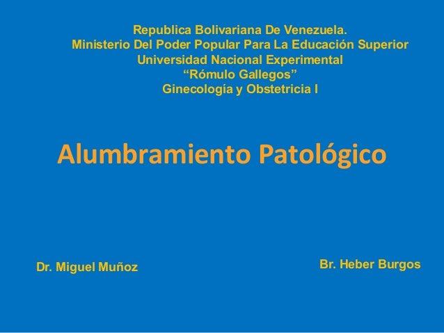 Republica Bolivariana De Venezuela. Ministerio Del Poder Popular Para La Educación Superior Universidad Nacional Experimen...