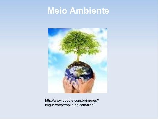 Meio Ambientehttp://www.google.com.br/imgres?imgurl=http://api.ning.com/files/-