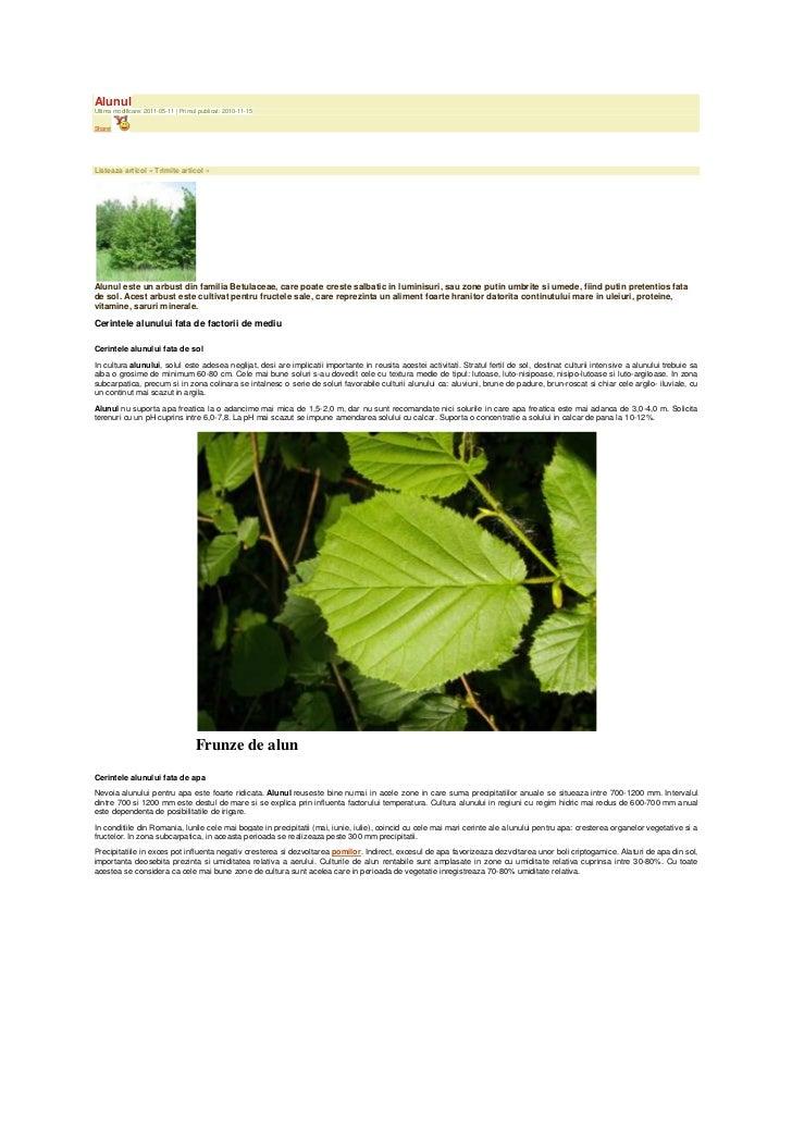 AlunulUltima modificare: 2011-05-11 | Primul publicat: 2010-11-15Share|Listeaza articol » Trimite articol »Alunul este un ...