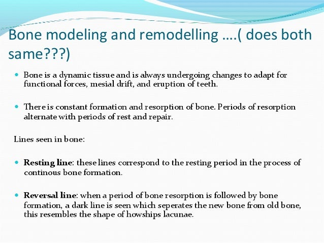 bone modelling and remodelling pdf