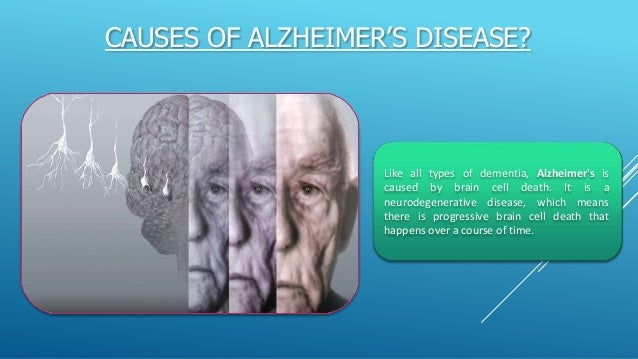 """the neurobiology causes and treatment of alzheimers disease If so, it could open new avenues for treatment  mackiewicz, program director at  the national institute on aging's division of neuroscience  and are getting to  the core"""" of what causes alzheimer's disease and how to stop it."""