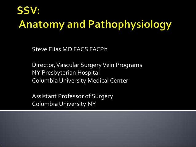 Physician Assistant Programs In Ny >> SSV: Anatomy & Pathophysiology