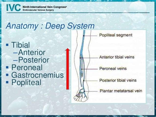 Detecting Deep Venous Disease With Duplex Ultrasound