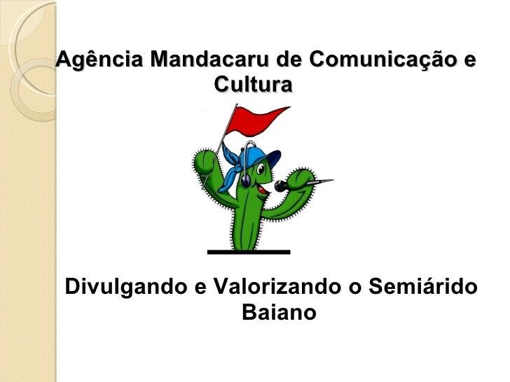 Agência Mandacaru de Comunicação e Cultura <ul><li>Divulgando e Valorizando o Semiárido Baiano </li></ul>