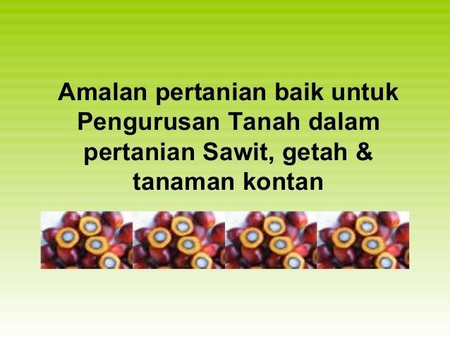 Amalan pertanian baik untuk Pengurusan Tanah dalam pertanian Sawit, getah & tanaman kontan