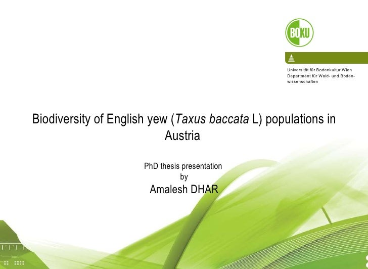 16/04/10 Biodiversity   of  English yew ( Taxus baccata  L) populations  in Austria   PhD thesis presentation  by A malesh...
