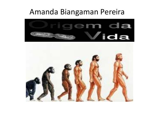Amanda Biangaman Pereira