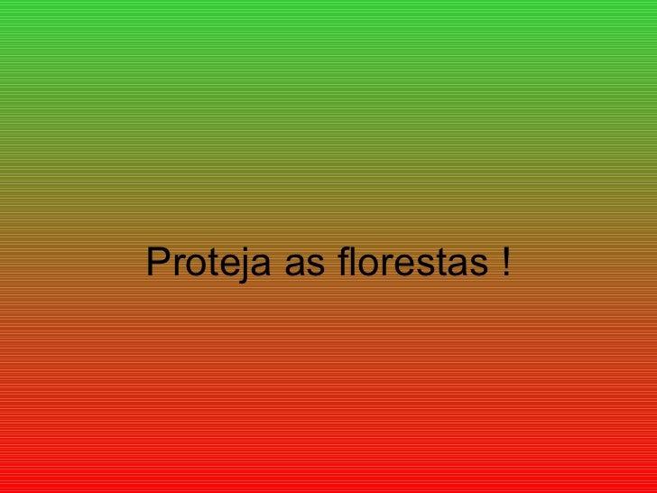 Proteja as florestas !