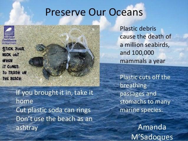 Bio 100- Ocean Pollution