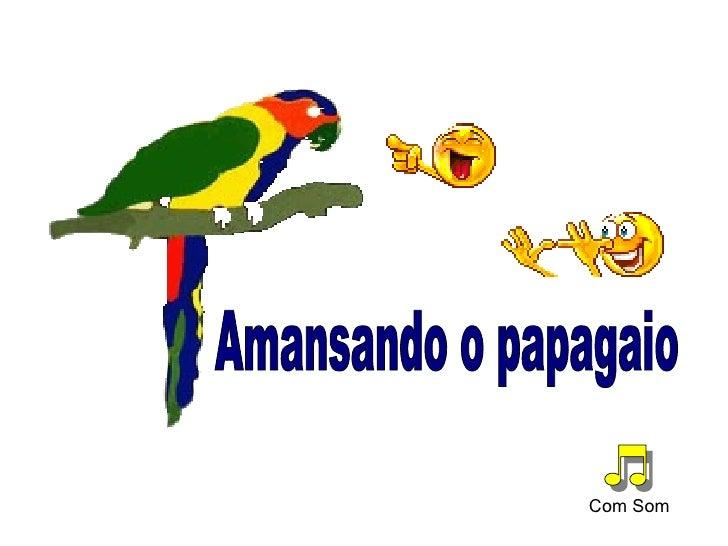 Amansando o papagaio Com Som