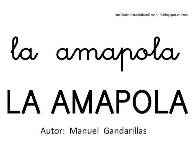 AMAPOLA libro