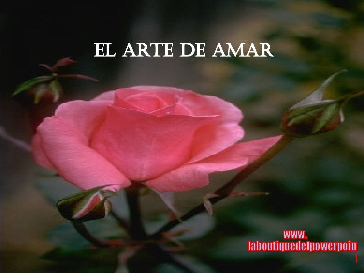 El Arte de Amar www. laboutiquedelpowerpoint. com