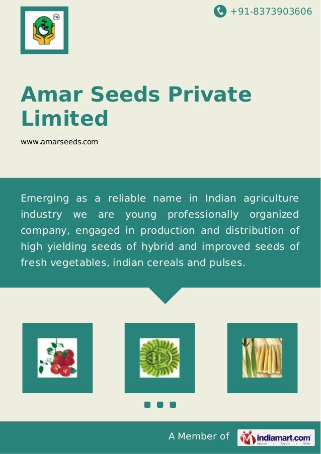 +91-8373903606 A Member of Amar Seeds Private Limited www.amarseeds.com Emerging as a reliable name in Indian agriculture ...
