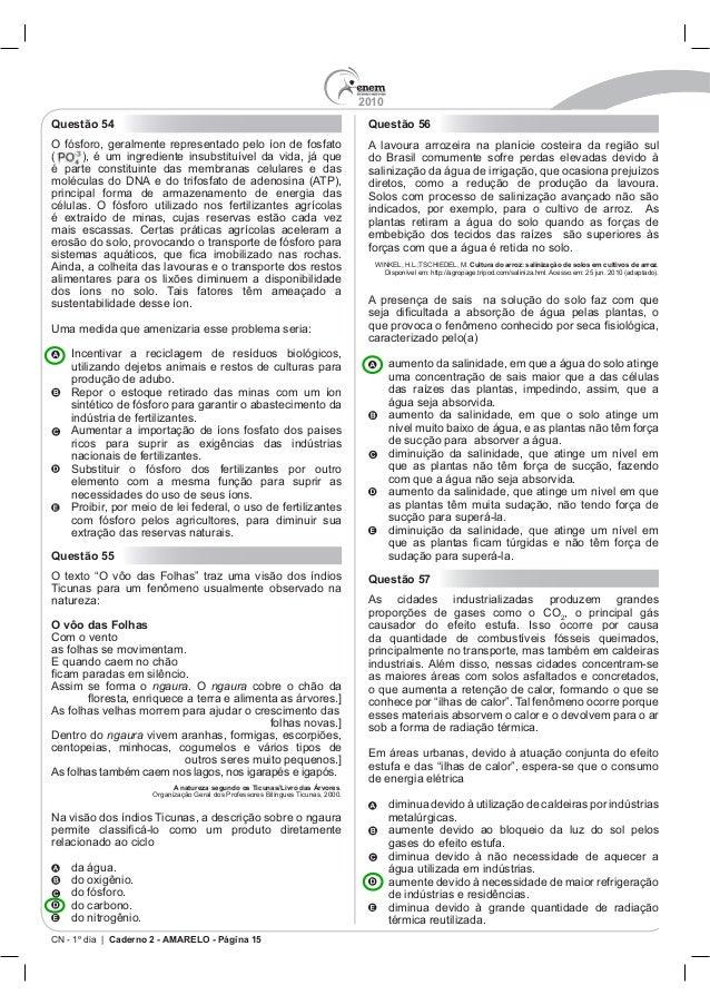 2010 CN - 1º dia | Caderno 2 - AMARELO - Página 15 Questão 54 Questão 55 O vôo das Folhas Com o vento ngaura ngaura Dentro...