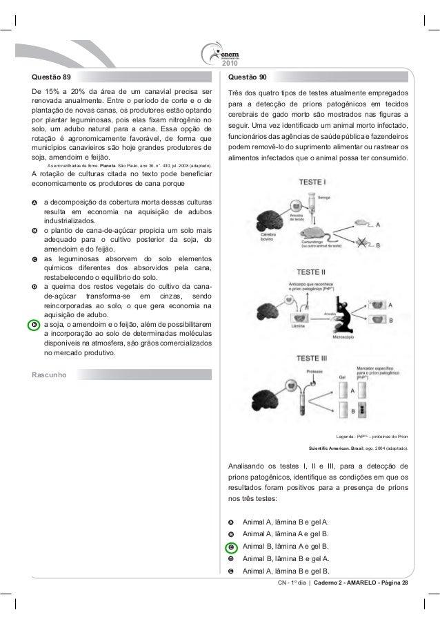 2010 CN - 1º dia | Caderno 2 - AMARELO - Página 28 Questão 89 Planeta economicamente os produtores de cana porque Rascunho...