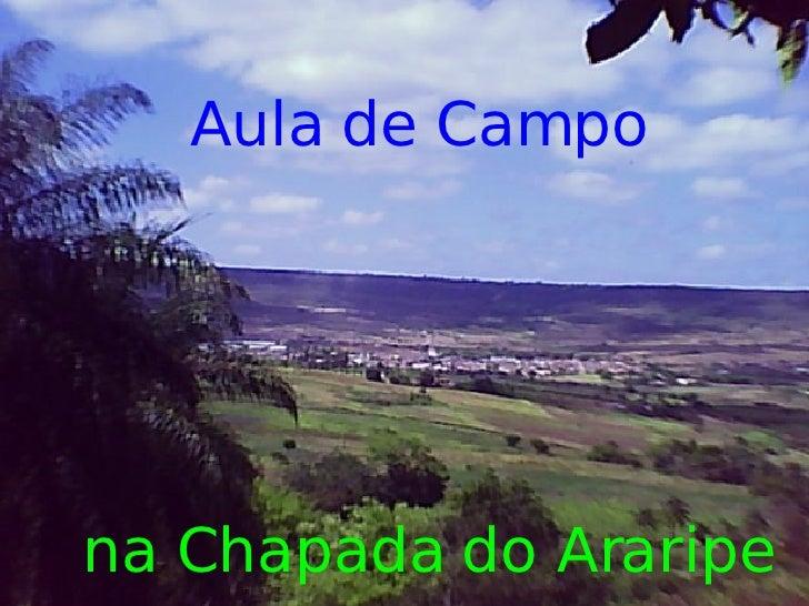 Aula de Campo     na Chapada do Araripe